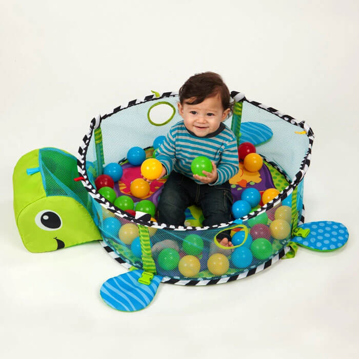 Play Gym With Ball Pit 1521